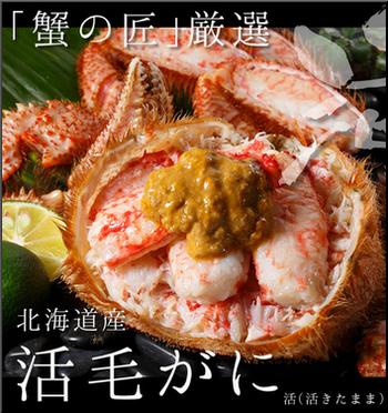 北海道の活蟹を自宅で「蟹刺し」-蟹の通販【卸専門】だから新鮮!毛ガニ